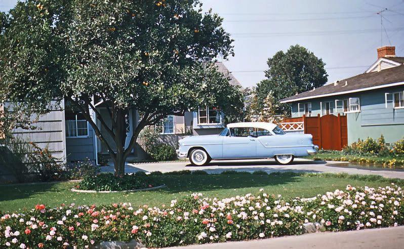 1950s. Suburbia.jpg